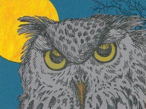 Coates Owl