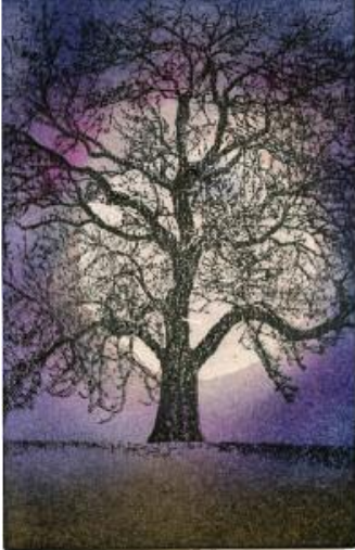 MidnightTree - Susan Mangis Noroski