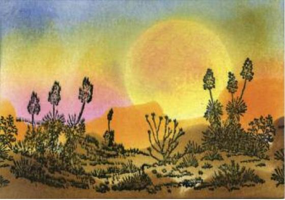 Desert Scene - Susan Mangis Noroski(